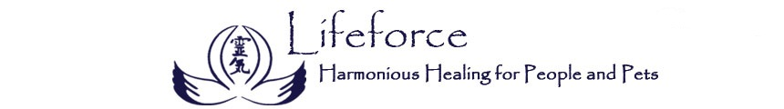 Lifeforce - Harmonious Healing for People and Pets - Reiki, Quantum Touch, Tong Ren, Chakra Balancing, Animal Communication, Spiritual Blessings